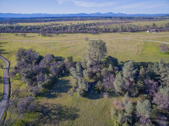 Basin Hollow, Millville, CA 96062 Photo 9