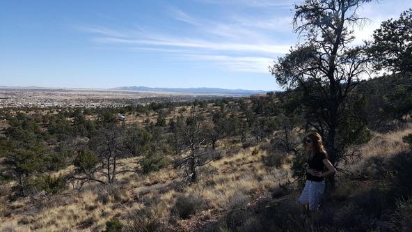 3060 N. Panamint Ln., Chino Valley, AZ 86323 Photo 6