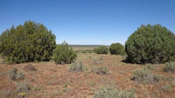 645 Westwood Ranch Lot 645, Seligman, AZ 86337 Photo 21