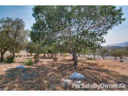 35440 Thomas Rd., Agua Dulce, CA 91390 Photo 30