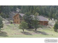 Home for sale: 1077 Dunraven Glade Rd., Glen Haven, CO 80532