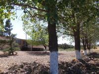 Home for sale: 1785 Cox Dr., White Mountain Lake, AZ 85912