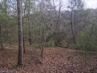 Home for sale: Lot 165 Pheasant St., Lake Lure, NC 28746