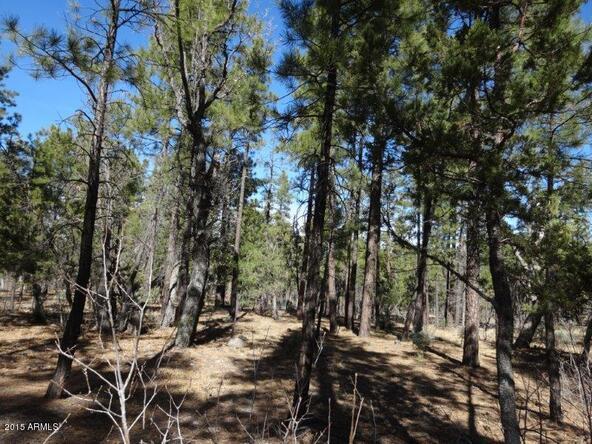1090 W. Sadler Ln., Lakeside, AZ 85929 Photo 13