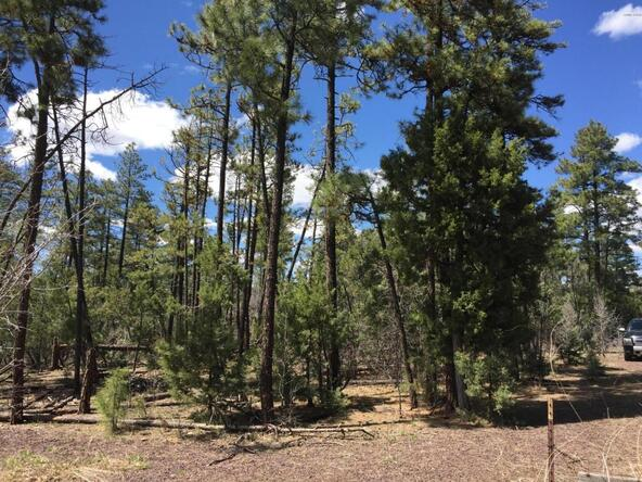 790 W. Pine Spruce Ln., Pinetop, AZ 85935 Photo 2