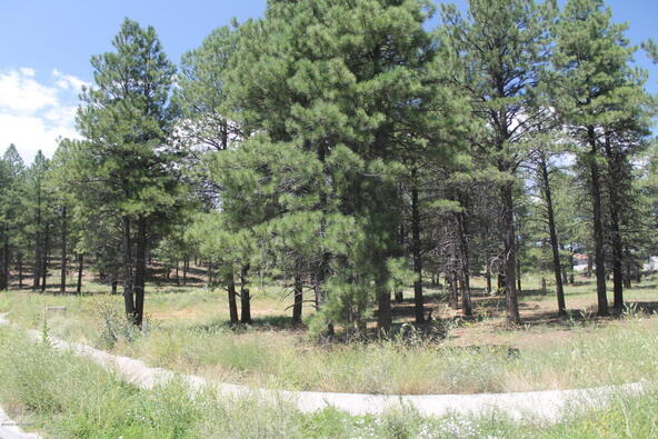 33 E. Tranquil Ln., Flagstaff, AZ 86005 Photo 42