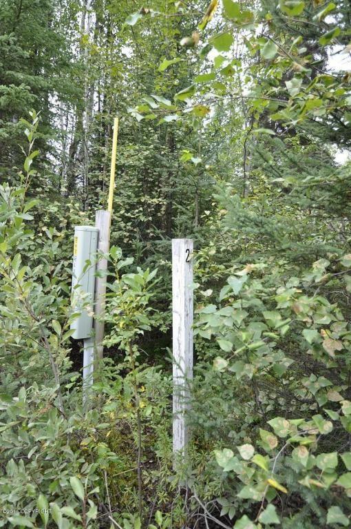 13585 N. Emswiler Dr., Willow, AK 99688 Photo 2