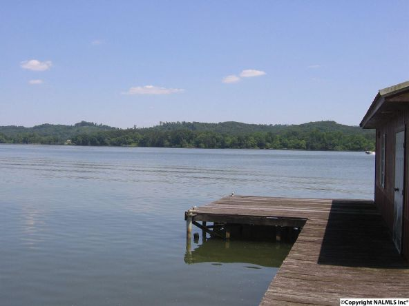891 Point Of Pines, Guntersville, AL 35976 Photo 4