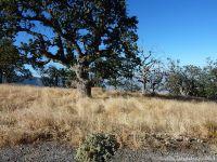 Home for sale: 26211 Hazelwood Ct., Tehachapi, CA 93561