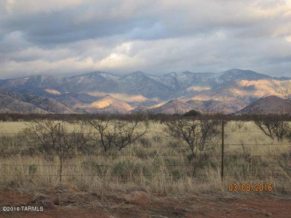 40 Acres S. Kuykendall & E. Shamrock Ln., Pearce, AZ 85625 Photo 6
