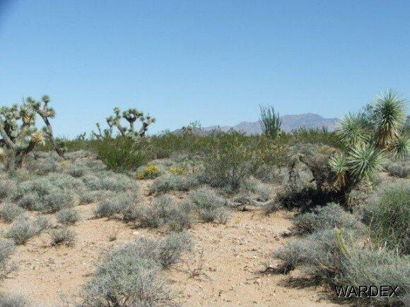 Parc 457 Shadow Ln., Yucca, AZ 86438 Photo 6