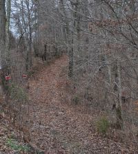 Home for sale: 9.81ac Off Goff Rd., Baxter, TN 38544