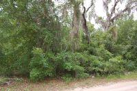 Home for sale: 1113 Third Ave., Steinhatchee, FL 32359