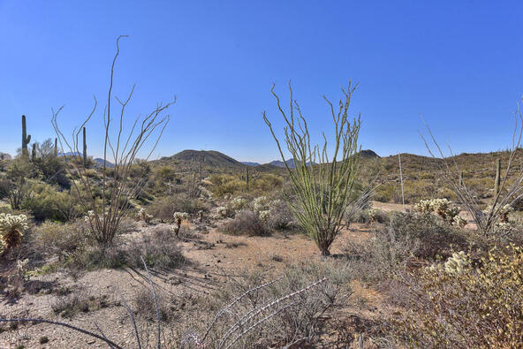 45 N. Cottonwood Canyon Rd., Cave Creek, AZ 85331 Photo 12