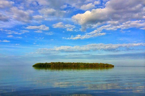 Key Largo, FL 33037 Photo 11