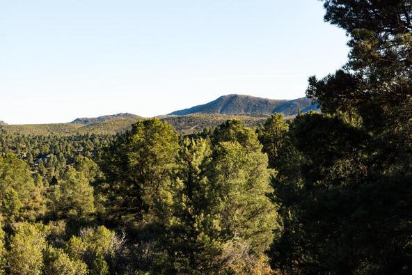 17955 W. Buckhorn Dr., Peeples Valley, AZ 86332 Photo 41