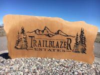 Home for sale: L6b1 Trail Blazer, Rigby, ID 83442