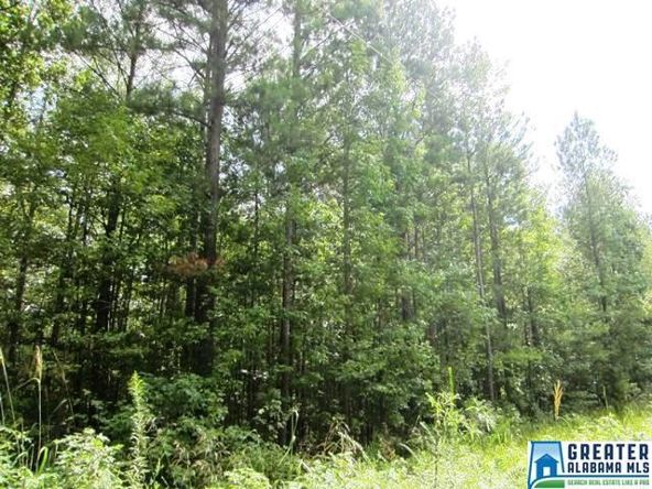 3.27 Acres Thomas Ln., Ashland, AL 36251 Photo 3