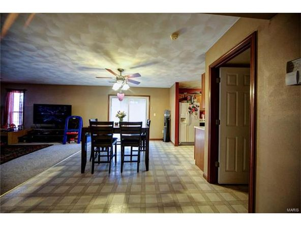 804 Country Meadow Ln., Belleville, IL 62221 Photo 7
