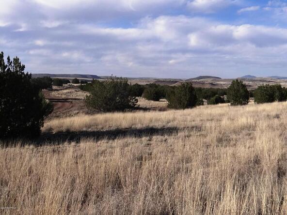 522 Sierra Verde Ranch, Seligman, AZ 86337 Photo 6