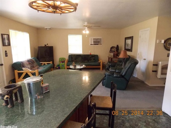 1105 Walnut Grove Rd., Hector, AR 72843 Photo 36