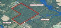 Home for sale: 613 Acres In Wheeler County, Glenwood, GA 30411
