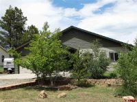 Home for sale: 179 Woodsman, Pagosa Springs, CO 81147