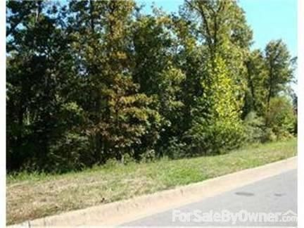 Lot 44, 1258 N. Summersby Dr., Fayetteville, AR 72703 Photo 4