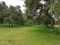 Home for sale: 1475 Ewing Rd., Arroyo Grande, CA 93420