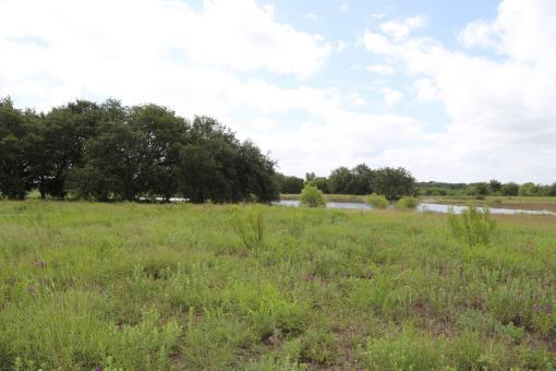 Fm 218, Pottsville, TX 76565 Photo 11