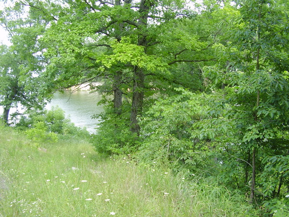 1-2-3 Seawall Dr., Climax Springs, MO 65324 Photo 9