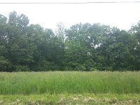 Home for sale: 764/765 Lake Wildwood Dr., Varna, IL 61375