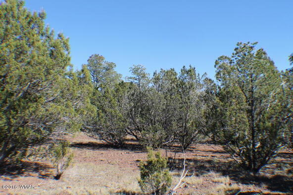 8 Acres Off Of Acr N. 3114, Vernon, AZ 85940 Photo 14