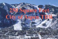 Home for sale: City Tdr City Tdr, Aspen, CO 81611