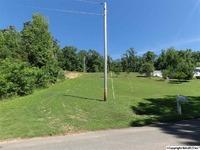 Home for sale: 65 Trico Dr., Guntersville, AL 35976