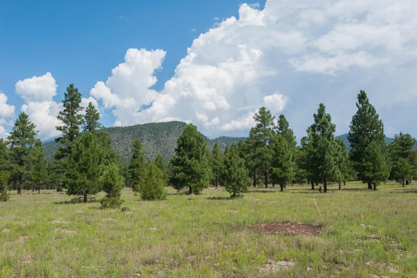 8r Lockett Ranches, Flagstaff, AZ 86001 Photo 8