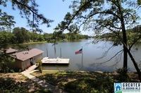Home for sale: 368 Traweek Ln., Pell City, AL 35128