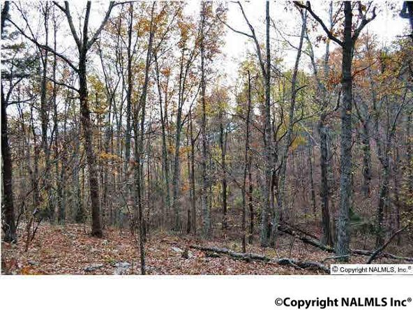 3 South Bluff Trail, Huntsville, AL 35803 Photo 5