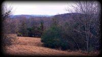 Home for sale: 0 New Middleton Hwy., Gordonsville, TN 38563