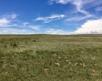 Home for sale: Kobilan Rd., Calhan, CO 80808