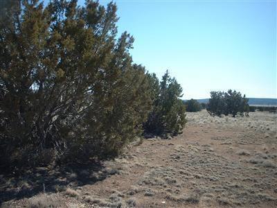 25505 E. Hillcrest Dr., Seligman, AZ 86337 Photo 2