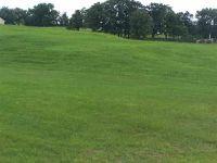 Home for sale: Lot #9 Roberts Subdivision, Elizabeth, IL 61028