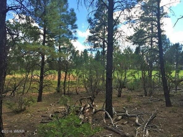 4281 W. Falling Leaf Rd., Show Low, AZ 85901 Photo 8