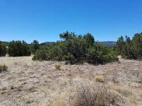 Home for sale: W. Benny Jay, Eagar, AZ 85925