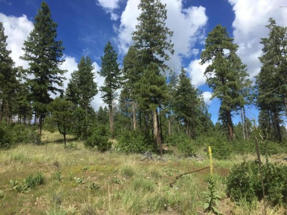 22 Cr 2074, Alpine, AZ 85920 Photo 13