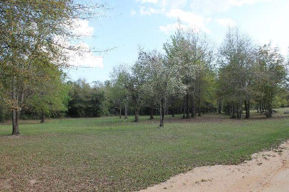 794 Freedom Dr., Midland City, AL 36350 Photo 35