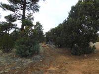 Home for sale: 2176 Gingerbread Ln., Overgaard, AZ 85933