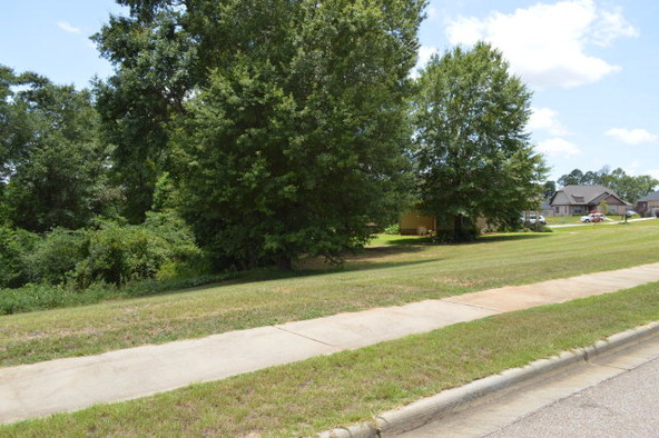 404 Turtleback Trail, Enterprise, AL 36330 Photo 48