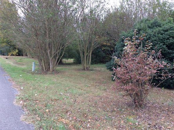 275 Cr 533, Rogersville, AL 35652 Photo 11