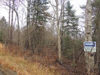Home for sale: 3xx 9th Ave. W., Grand Marais, MN 55604
